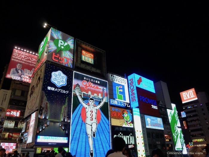 2013 P1080172 - Cultura en Kyoto y ocio en Osaka