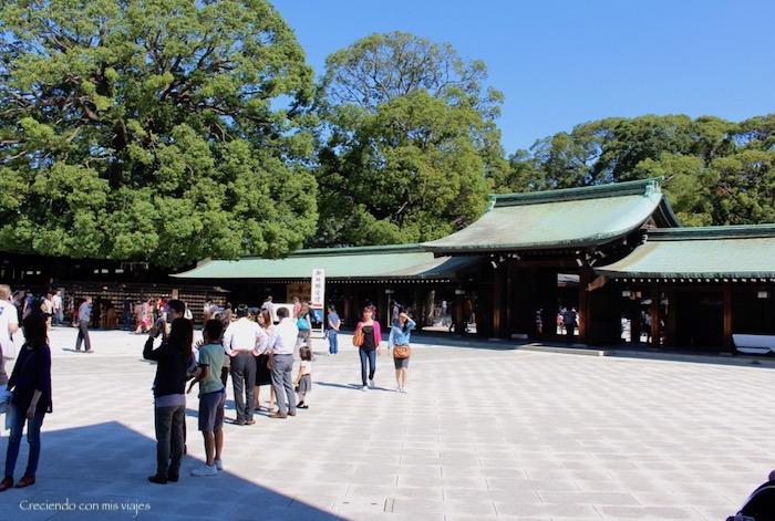 IMG 0156 - Harajuku, Omotesando, Odaiba y Asakusa