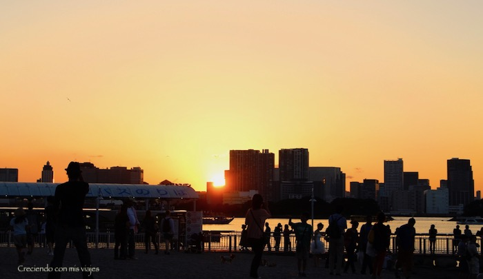 IMG 0229 - Harajuku, Omotesando, Odaiba y Asakusa