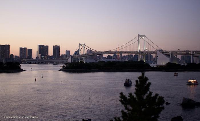 IMG 0262 - Harajuku, Omotesando, Odaiba y Asakusa