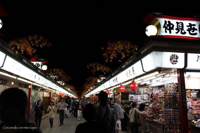 IMG 0270 - Harajuku, Omotesando, Odaiba y Asakusa