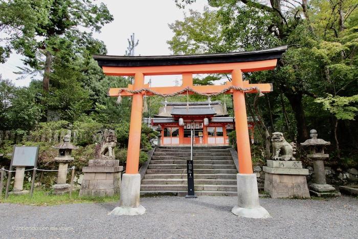 IMG 5551 - Uji, Obaku y volvemos a Fushimi Inari