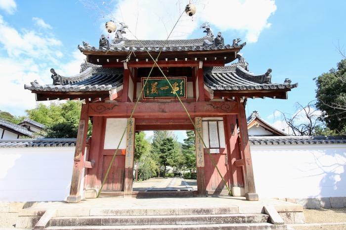 IMG 5556 - Uji, Obaku y volvemos a Fushimi Inari