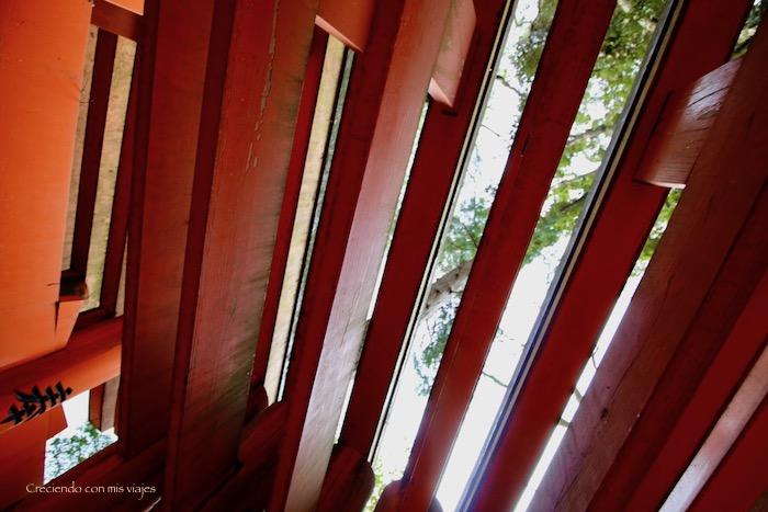 IMG 5594 - Uji, Obaku y volvemos a Fushimi Inari