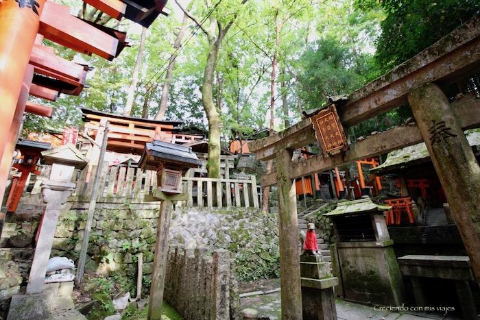 IMG 5612 - Uji, Obaku y volvemos a Fushimi Inari