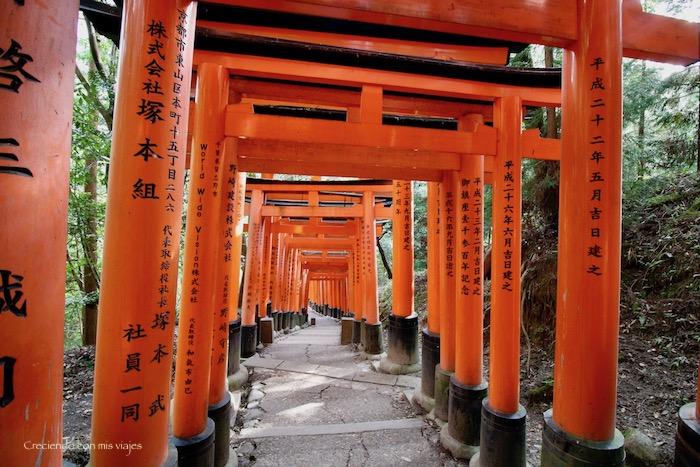 IMG 5618 - Uji, Obaku y volvemos a Fushimi Inari