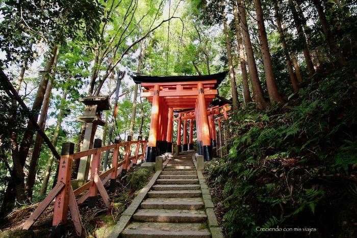 IMG 5635 - Uji, Obaku y volvemos a Fushimi Inari