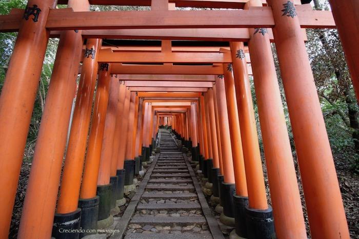 IMG 5653 - Uji, Obaku y volvemos a Fushimi Inari
