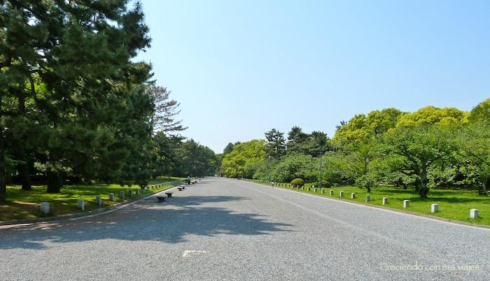 P1010098 - Palacio, Castillo y macacos en Kyoto