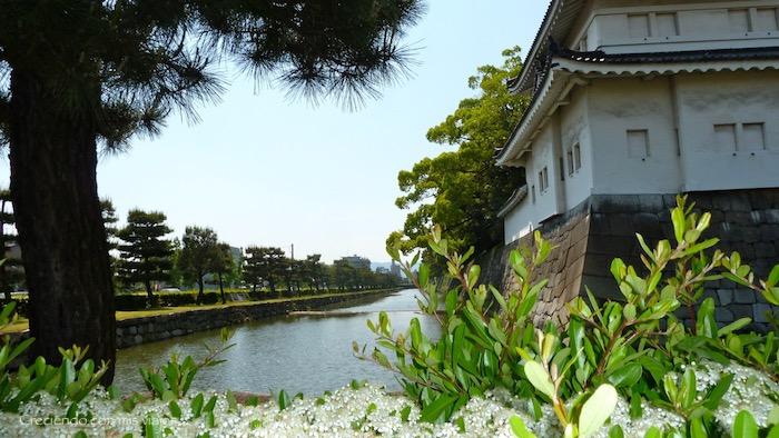 P1010263 - Palacio, Castillo y macacos en Kyoto