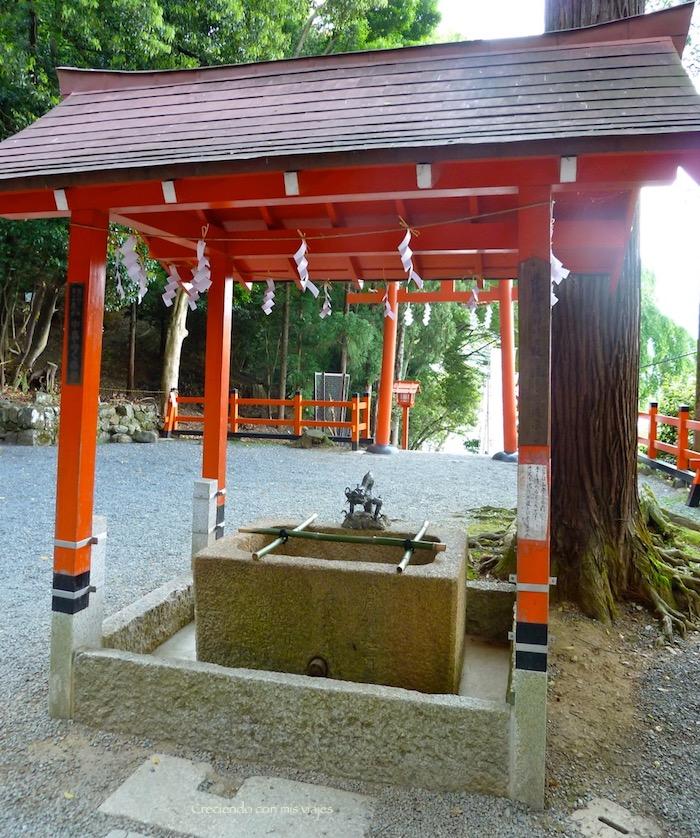 P1010271 - Palacio, Castillo y macacos en Kyoto