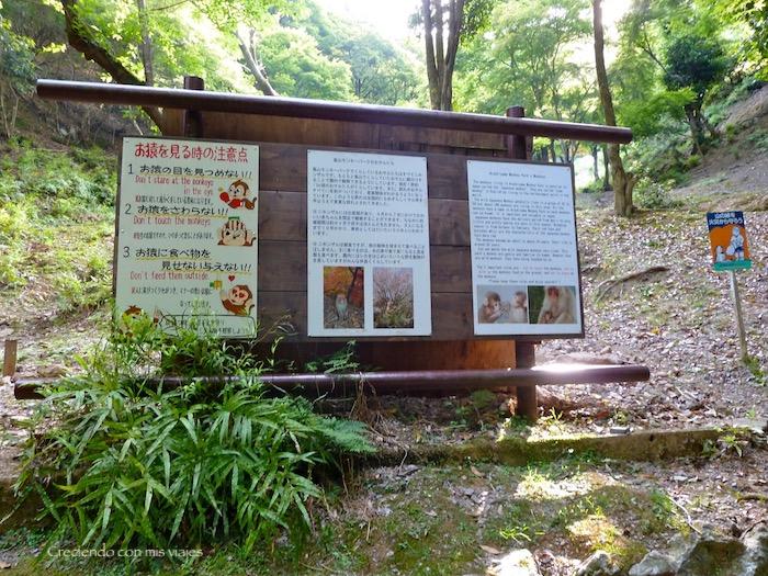 P1010280 - Palacio, Castillo y macacos en Kyoto