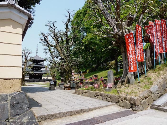 P1010321 - Vamos a conocer los ciervos de Nara