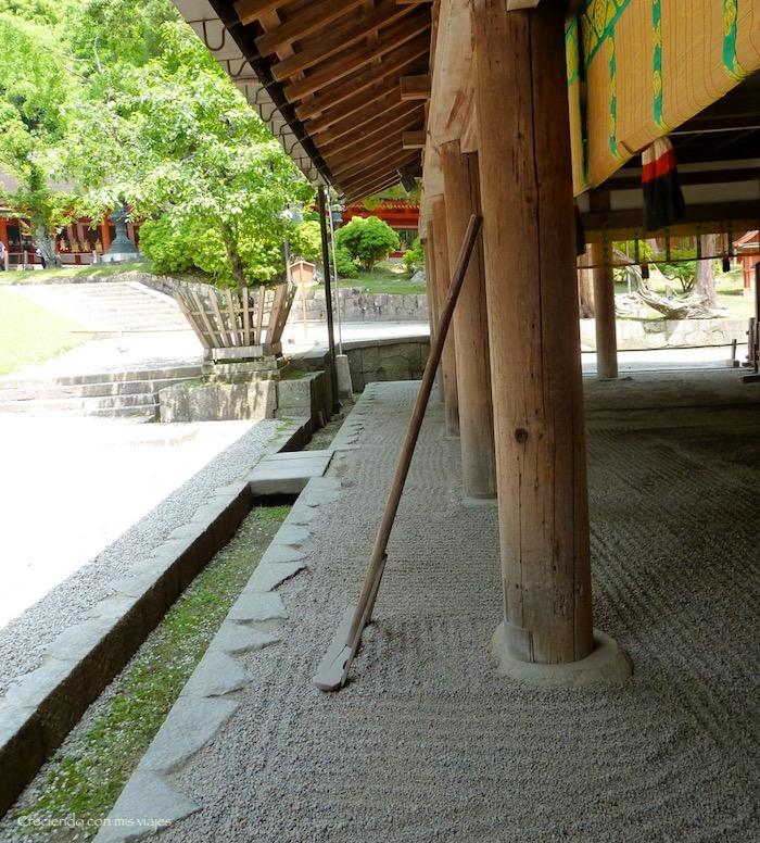 P1010487 - Vamos a conocer los ciervos de Nara
