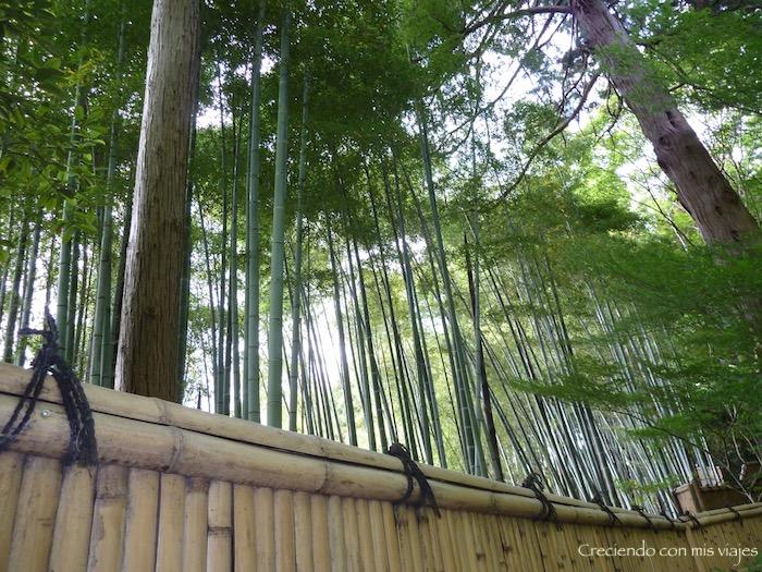 P1010673 - Fushimi Inari y Templo Plateado de Kyoto