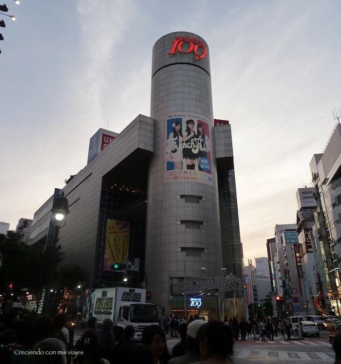 P1020221 - ¡La gran Tokyo nos espera!