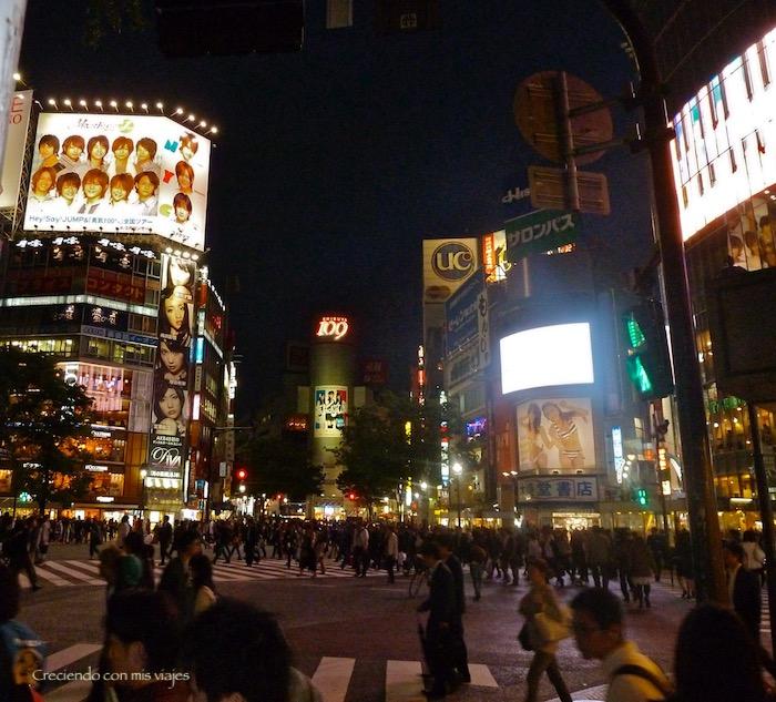 P1020243 - ¡La gran Tokyo nos espera!