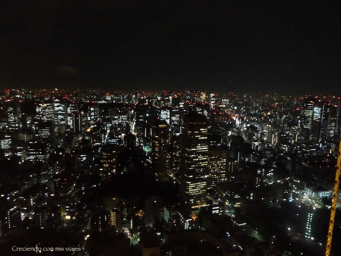 P1020466 - Asakusa, Odaiba y Tokyo Tower