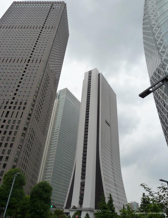 P1020535 - Palacio Imperial de Tokyo y Shinjuku