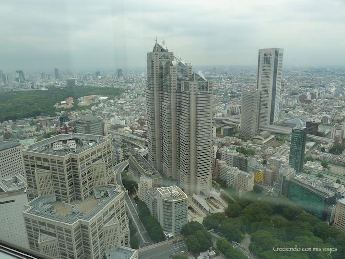 P1020557 - Palacio Imperial de Tokyo y Shinjuku