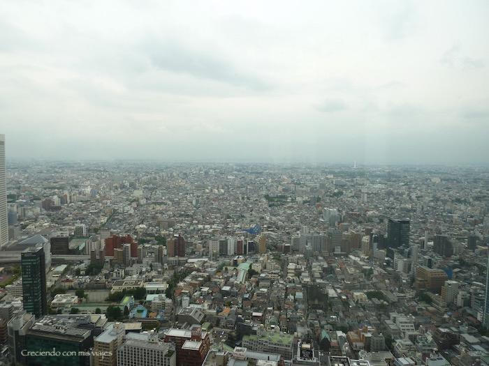 P1020564 - Palacio Imperial de Tokyo y Shinjuku
