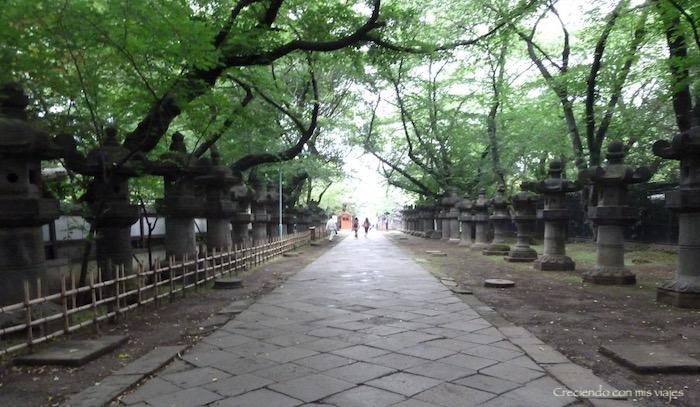 P1020607 - Yanaka, Nippori, Ueno y Akihabara