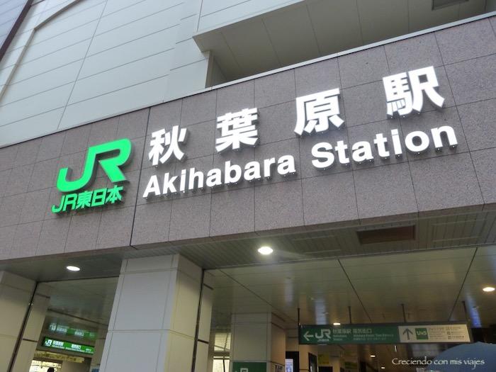 P1020807 - Yanaka, Nippori, Ueno y Akihabara