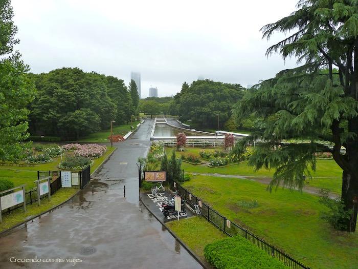 P1020983 - Shibuya, Yoyogi Park e Ikebukuro