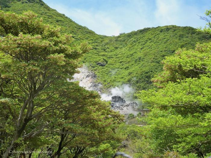 P1030035 - ¡disfrutamos del onsen privado en Hakone!