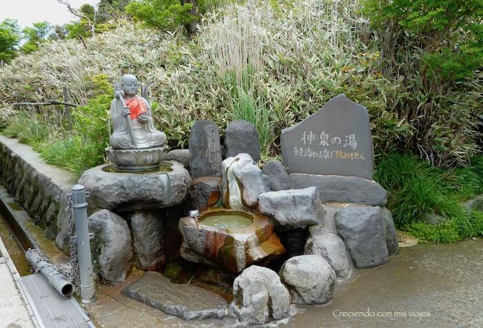 P1030039 - ¡disfrutamos del onsen privado en Hakone!