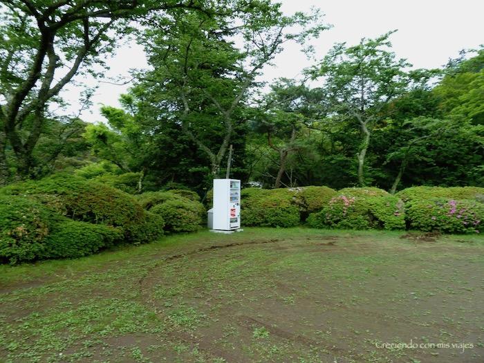 P1030146 - ¡disfrutamos del onsen privado en Hakone!