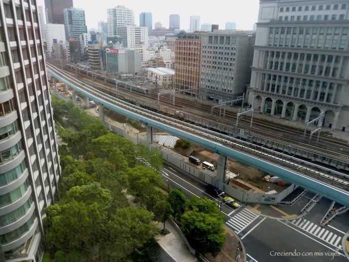 P1030196 - Último día en Tokyo