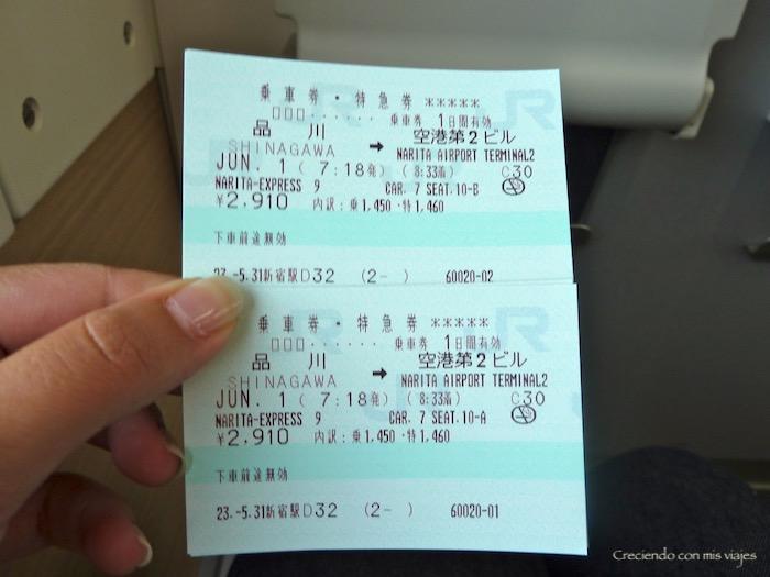 P1030241 - Acaba el Japón 2011