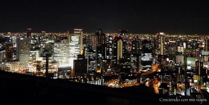 P1070295 - ¡Estamos de vuelta en Japón!