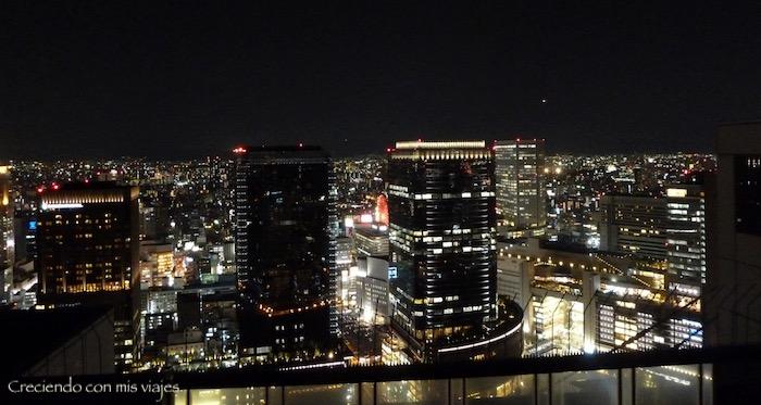 P1070309 - ¡Estamos de vuelta en Japón!