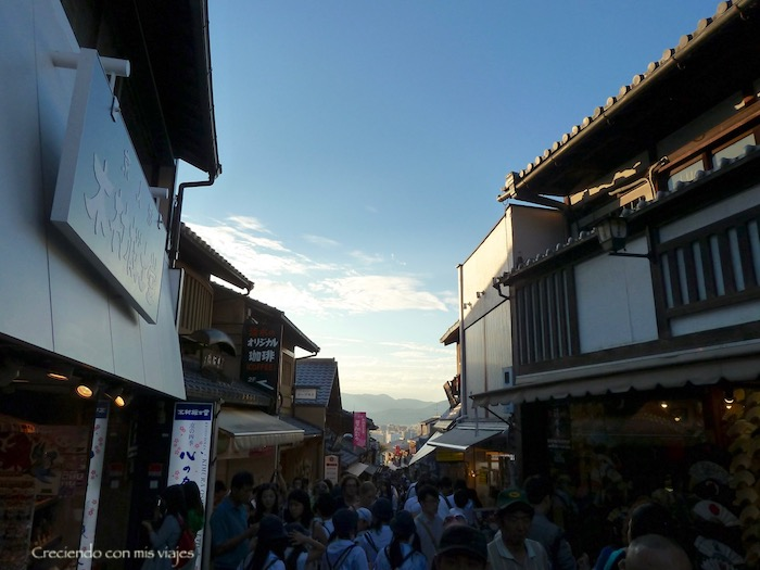 P1070997 - Regresamos a nuestra ciudad favorita: Kyoto