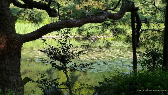 P1080131 - Cultura en Kyoto y ocio en Osaka