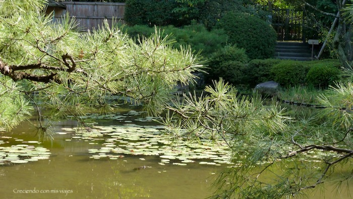 P1080138 - Cultura en Kyoto y ocio en Osaka