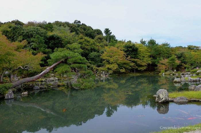 P1080203 - Entre bosques de bambú en Arashiyama