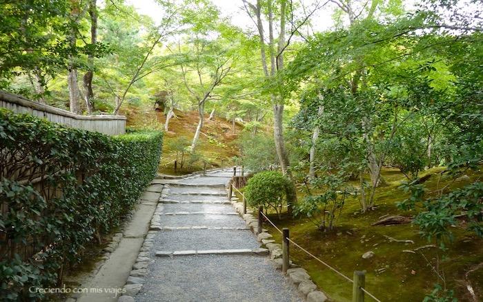 P1080207 - Entre bosques de bambú en Arashiyama