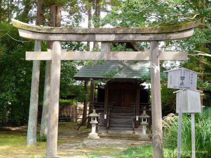 P1080269 - Entre bosques de bambú en Arashiyama