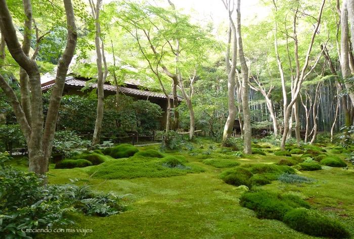 P1080310 - Entre bosques de bambú en Arashiyama