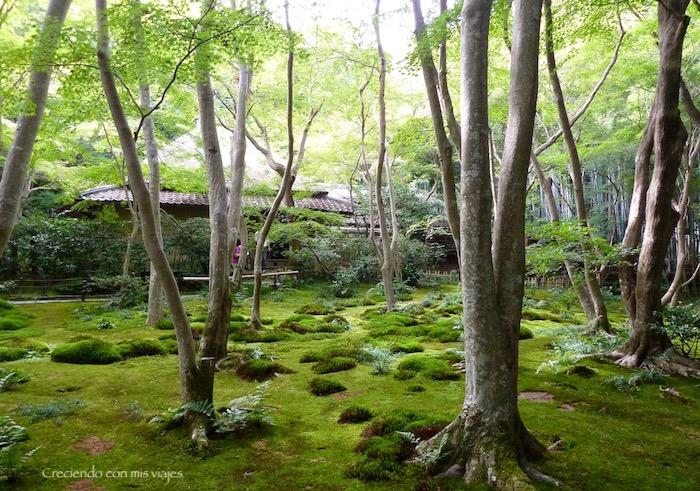 P1080321 - Entre bosques de bambú en Arashiyama
