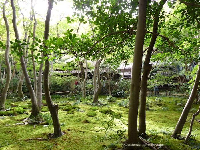 P1080324 - Fabulosos templos del norte de Kyoto