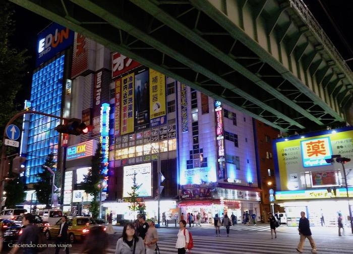 P1090099 1 - Matsumoto y de vuelta en Tokyo