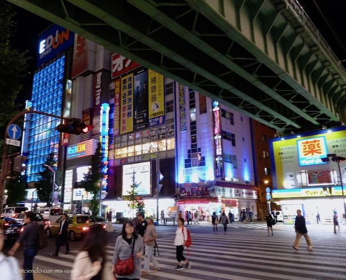 P1090099 - Yanaka, Nippori, Ueno y Akihabara