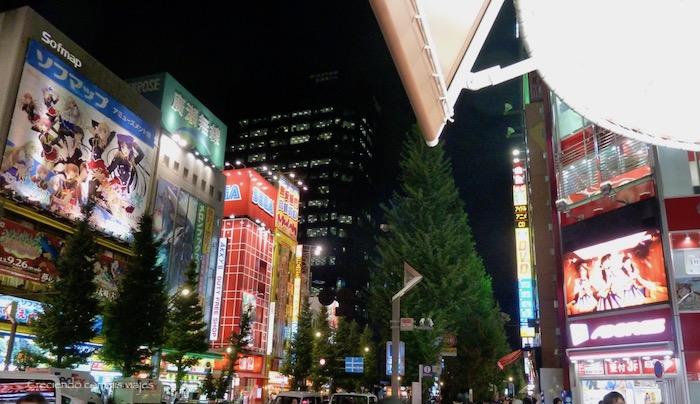 P1090101 - Matsumoto y de vuelta en Tokyo