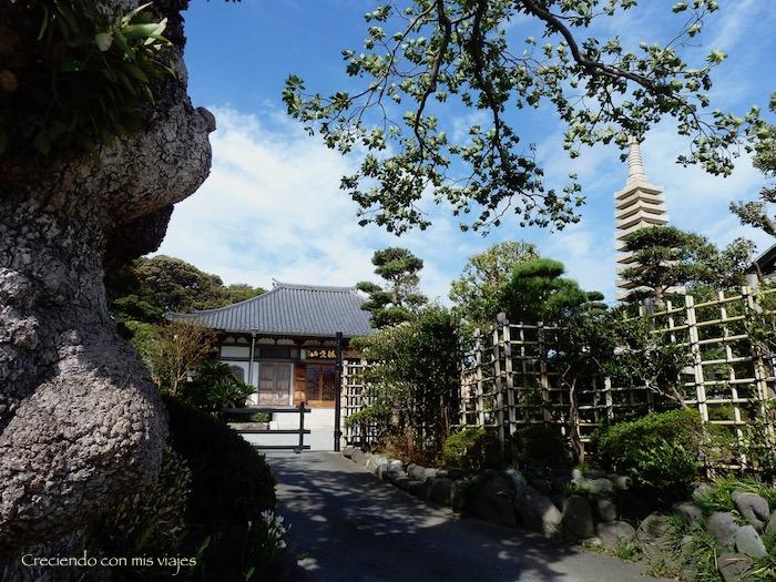 P1090126 - Kamakura, Yokohama y Ameyoko