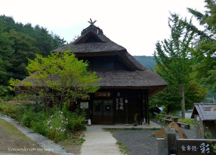 P1090461 - Recorremos la falda del Mt. Fuji