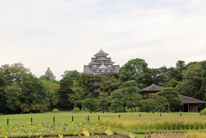 IMG 5972 - Kurashiki, Okayama y Kobe